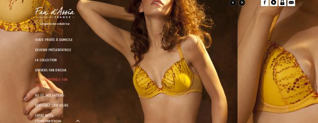 Netlinking de l'agence web pour un site vitrine de vente de lingerie