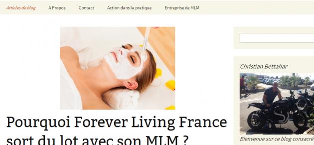 Rédiger des articles pour un blog de mlm