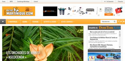 Audits pour le référencement d'un site spécialisé sur la Martinique