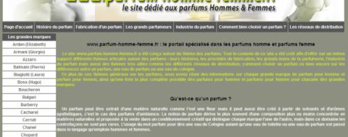 Référencement d'un site internet avec netlinking