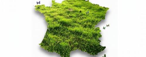 Rédaction d'articles web sur le développement durable