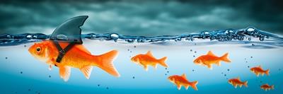 2 mythes et croyances dans le domaine de la rédaction pour le web